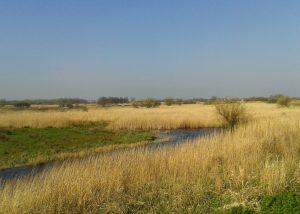 Klik hier voor de gemeente Landsmeer